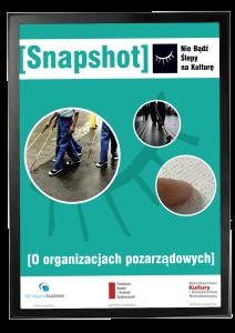 Snapshot o Organizacjach Pozarządowych